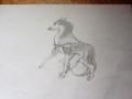 my jenna drawing