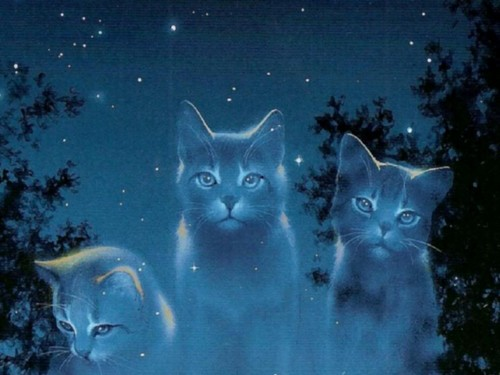 Warriors (Novel Series) پیپر وال probably containing a tom, a cat, and a kitten called starclan cats