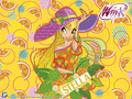 sweet stella - the-winx-club wallpaper