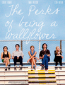 the Perks of being a wallflower  - movies fan art