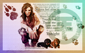 """Dogs Unleashed"" Wallpaper w/mudy bill - tokio-hotel wallpaper"