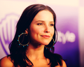 •Sophia• - sophia-bush wallpaper
