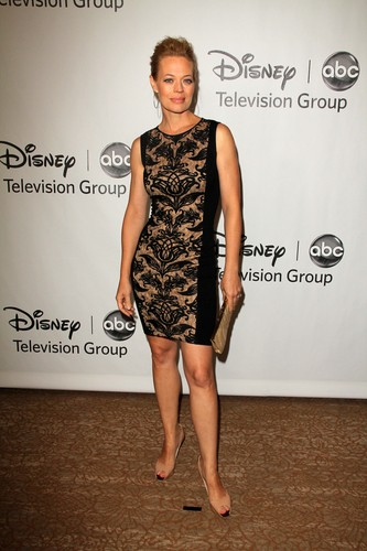2012 TCA Summer Press Tour - 迪士尼 ABC 电视 Group Party (July 27, 2012)