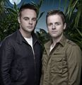 Ant and Dec - ant-and-dec photo