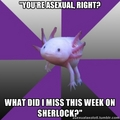Asexual Axolotl-Sherlock - sherlock photo