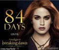 Breaking Dawn - rosalie-hale photo