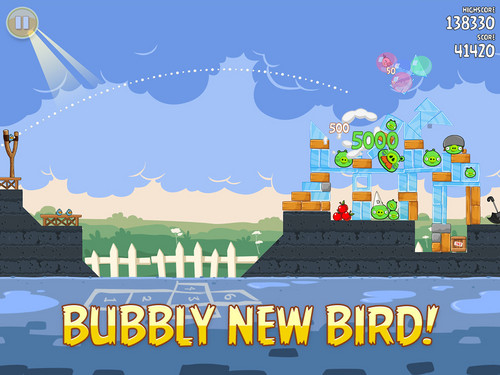 Bubbly New Bird!