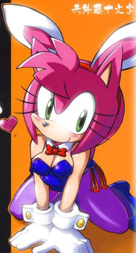 Bunny Amy
