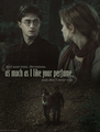 DHp1 - harry-potter-and-the-deathly-hallows fan art
