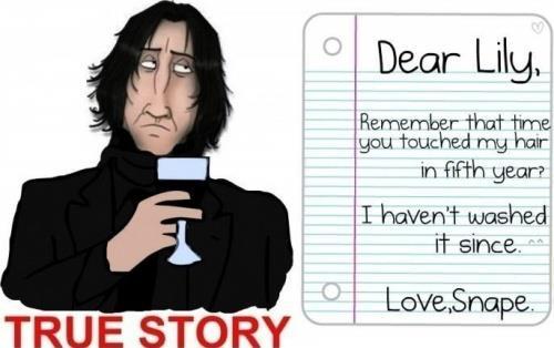 Dear Lily...