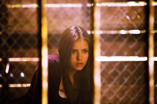 First look at Elena S4 HQ