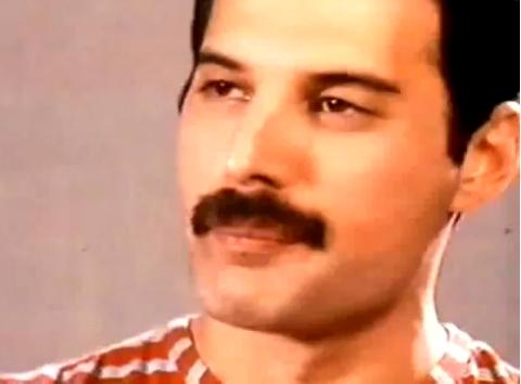 ♥ Freddie ♥