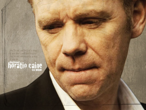 CSI: Miami wallpaper containing a business suit and a suit titled Horatio