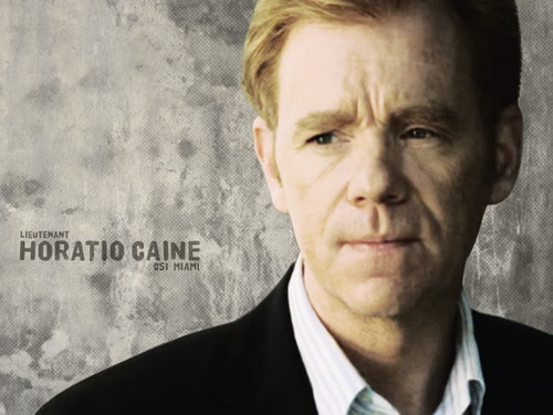 CSI: Miami wallpaper containing a business suit titled Horatio