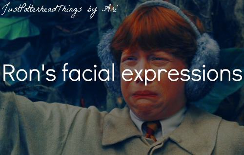 Just Potterhead Things 21-40