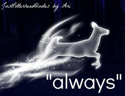 Just Potterhead Things 41-60