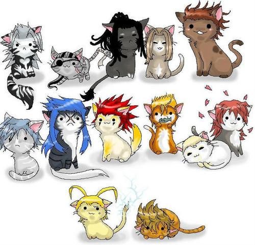 Kitty 13