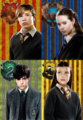 Narnia kids sorted on Harry Potter houses - harry-potter-vs-narnia photo