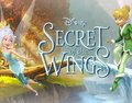New Secret of the Wings pic - tinkerbell-and-the-mysterious-winter-woods photo