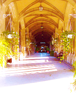 New location from City of Bones set, August 23, 2012