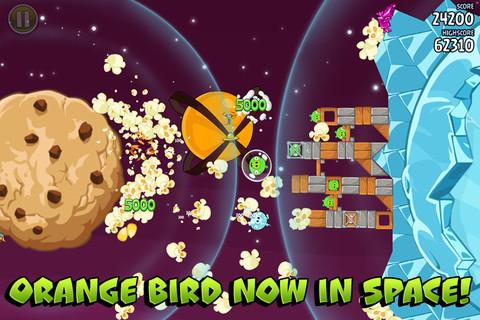 jeruk, orange Bird Now In Space!
