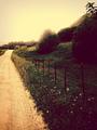 Photography ♥ - photography photo