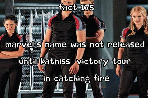 The Hunger Games facts 161-180 - the-hunger-games Fan Art
