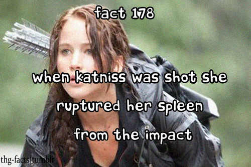 The Hunger Games facts 161-180