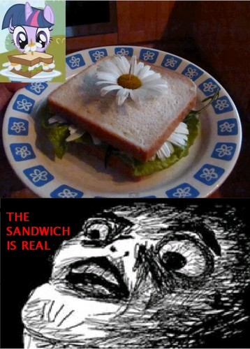 The emparedado, sándwich de is REAL!