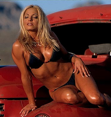 트리시 스트래터스 바탕화면 containing a bikini entitled Trish Stratus Photoshoot Flashback