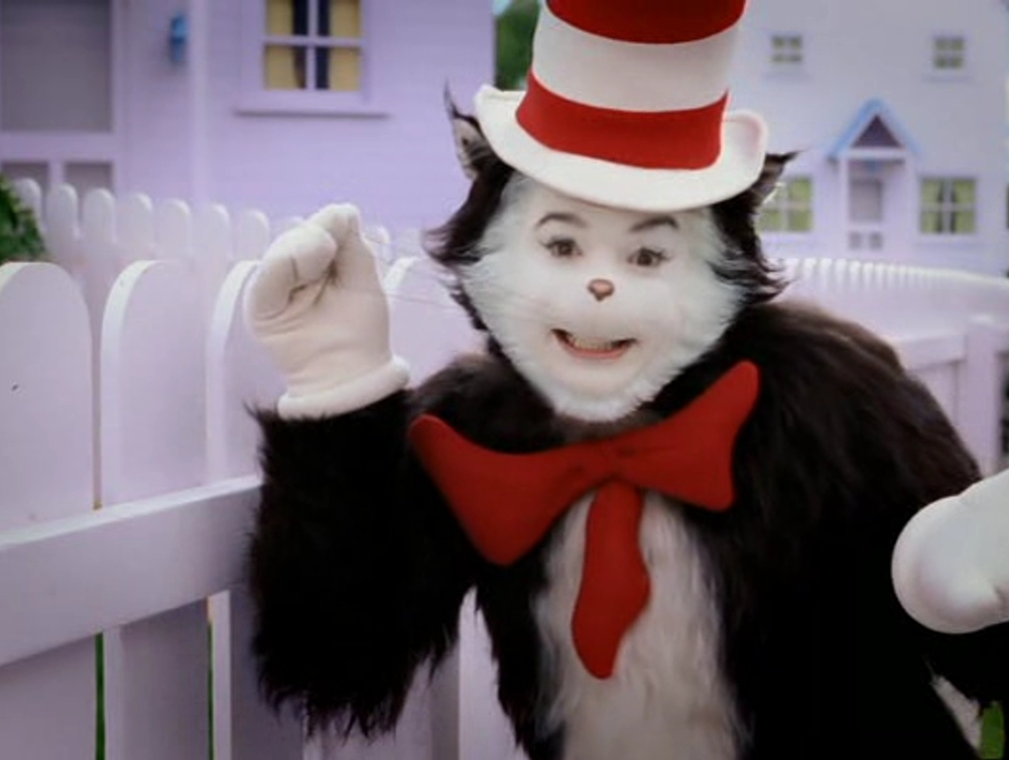 Cat And The Hat Costume Makeup