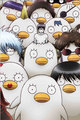 random stuff from my flash drive - gintama photo
