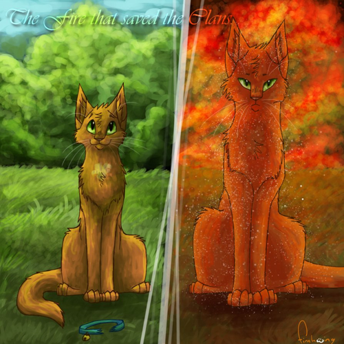 rusty to firestar