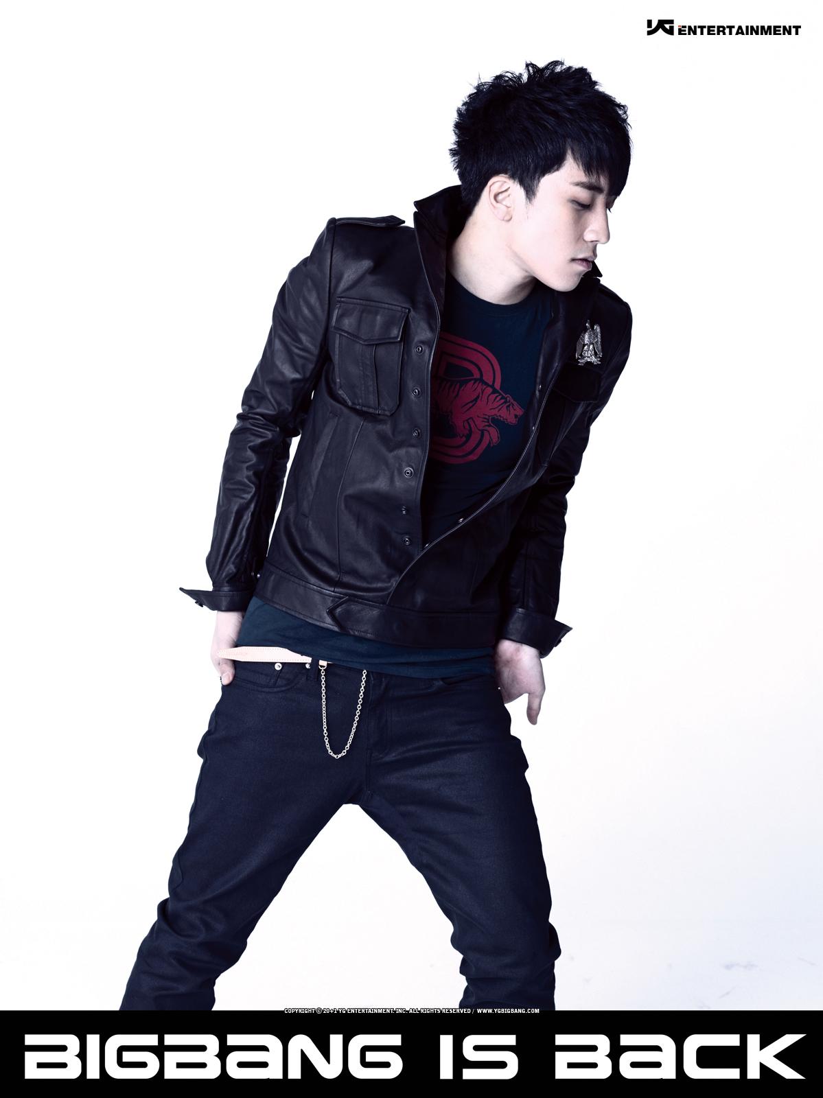 seungri is back DARA 2NE1 Photo (31979879) Fanpop