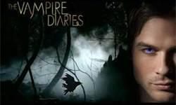 Damon and Stefan Salvatore wallpaper with a portrait and anime entitled the vampire diaries