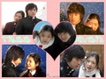 tree of heaven - korean-dramas photo