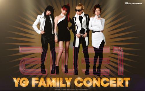 yg family 2NE1