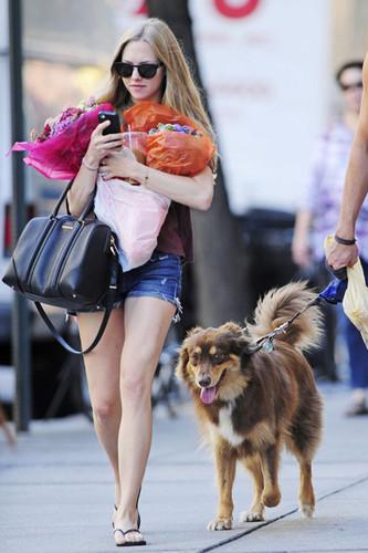 Amanda Seyfried Runs Errands in NYC [August 29, 2012]
