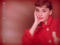 Audrey Hepburn - audrey-hepburn wallpaper