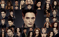 Breaking Dawn Part 2 HD Wallpapers - breaking-dawn-part-2 wallpaper