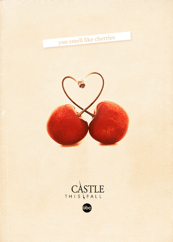 Caskett wallpaper possibly with a sign called Castle Season 5 Poster