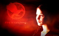 Catching Fire wallpaper