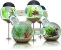 Creative Fish Tank - aquariums photo