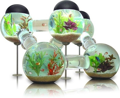 Creative مچھلی Tank
