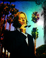 David Spade - david-spade fan art