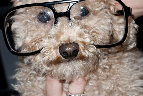 Gaga door Terry Richardson - Fozzi as Terry
