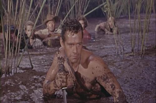 Gordon Scott in Tarzan the Magnificent