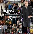 GregHot - dr-gregory-house photo