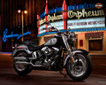 motorcycles - HARLEY DAVIDSON wallpaper