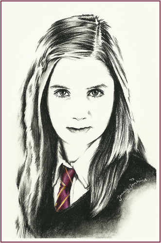 Harry Potter cast drawings por Jenny Jenkins